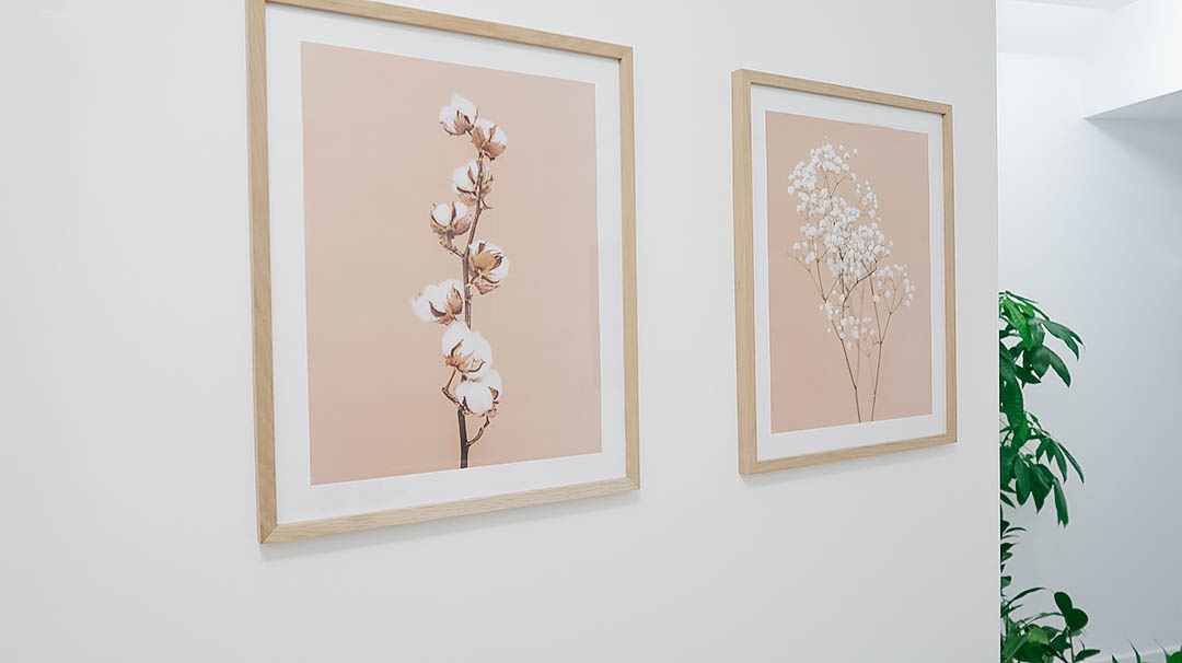 Photos of cotton and baby's breath framed on wall